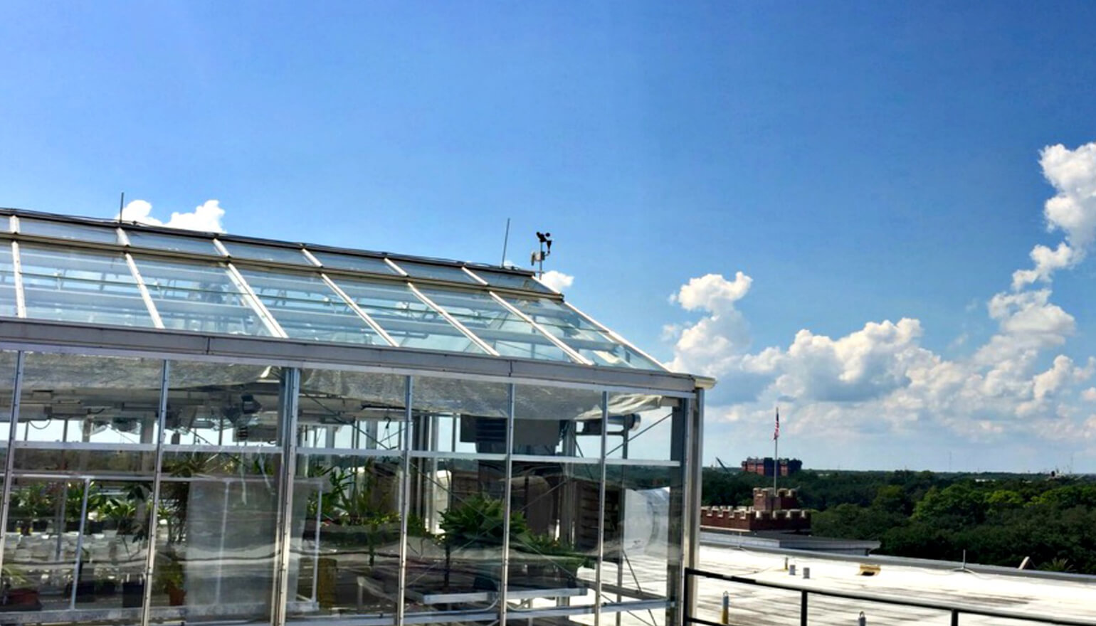 View of rooftop greenhouse