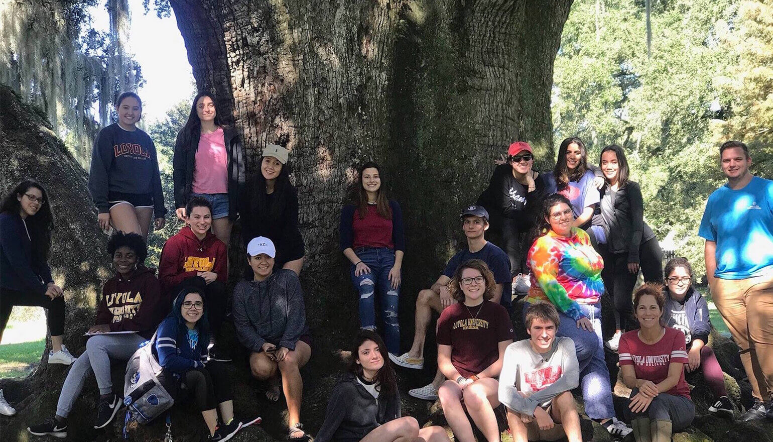 Group of foundations students by tree
